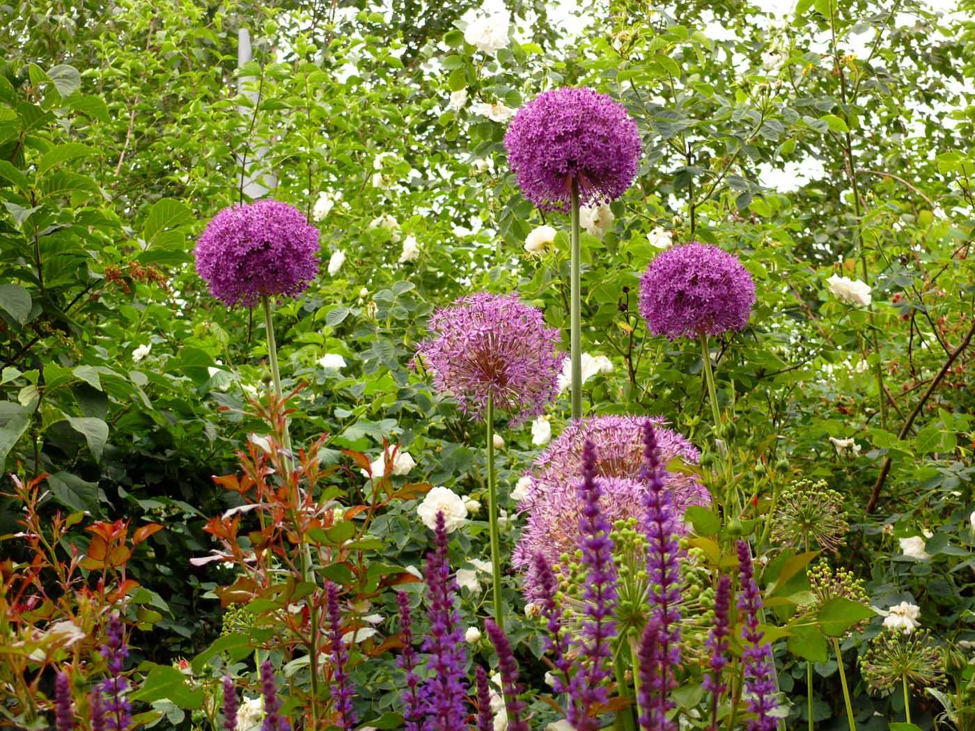 Uberlegen ... Reischl Blumen Gestaltung ...
